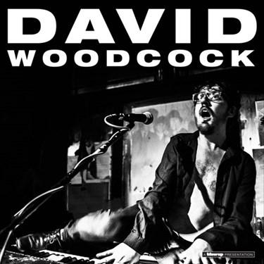david-woodcock
