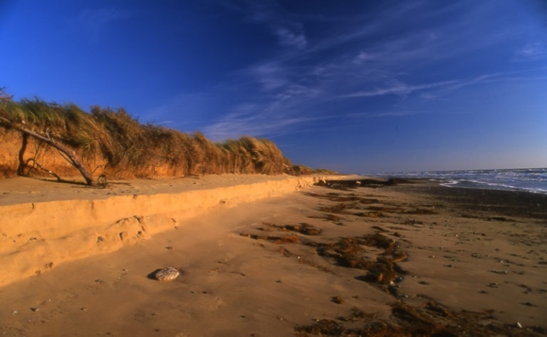 covehithe_beach1
